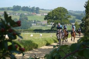 Lower gallop